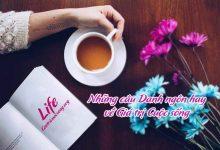 Danh ngôn về giá trị cuộc sống có ý nghĩa sâu sắc