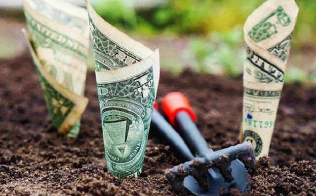 Đồng tiền sẽ có giá trị cao nhất khi chúng ta biết trận trọng và sở hữu nó cách chính đáng