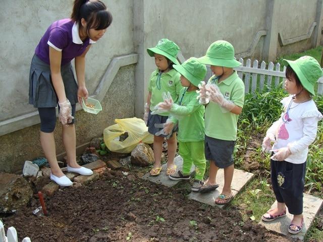Bố mẹ và thầy cô có thể hướng dẫn bé trồng cây, tưới cây để gần gũi hơn với thiên nhiên
