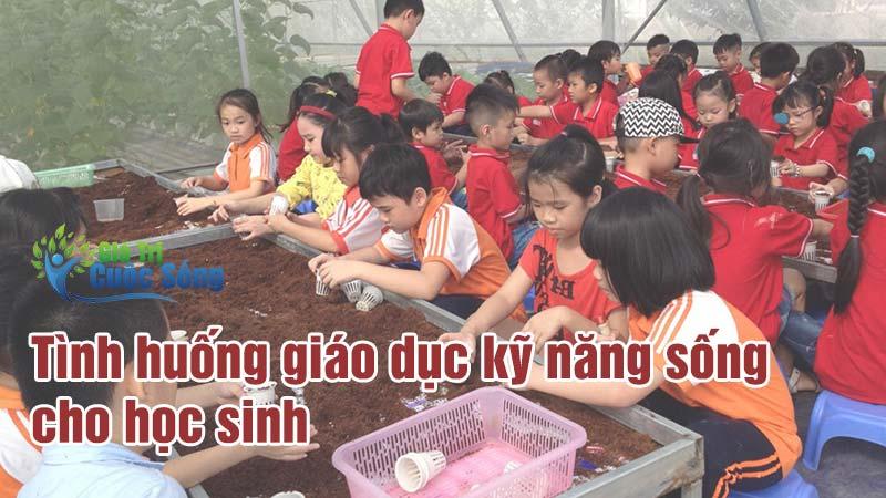 Tình huống giáo dục kỹ năng sống cho học sinh