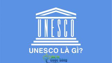 Photo of UNESCO là gì? UNESCO có bao nhiêu thành viên?